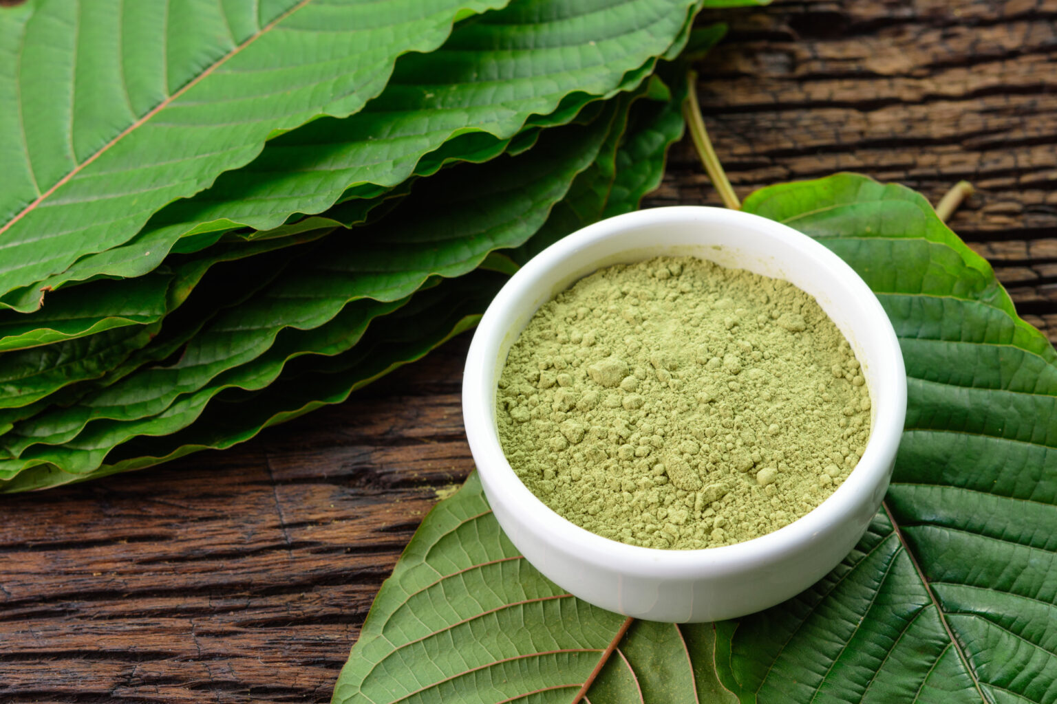 What Are the Most Common Types of Kratom Strains?