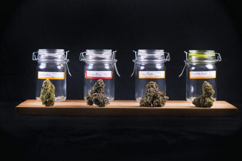 7 Factors to Consider When Purchasing Marijuana Online