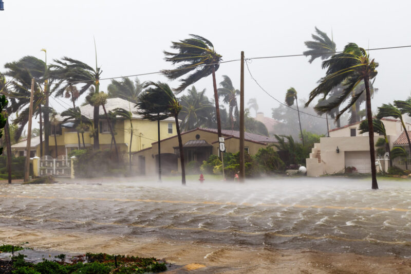 Are you suffering from a natural disaster strike on your home? Click here to learn what the next steps you should take are.