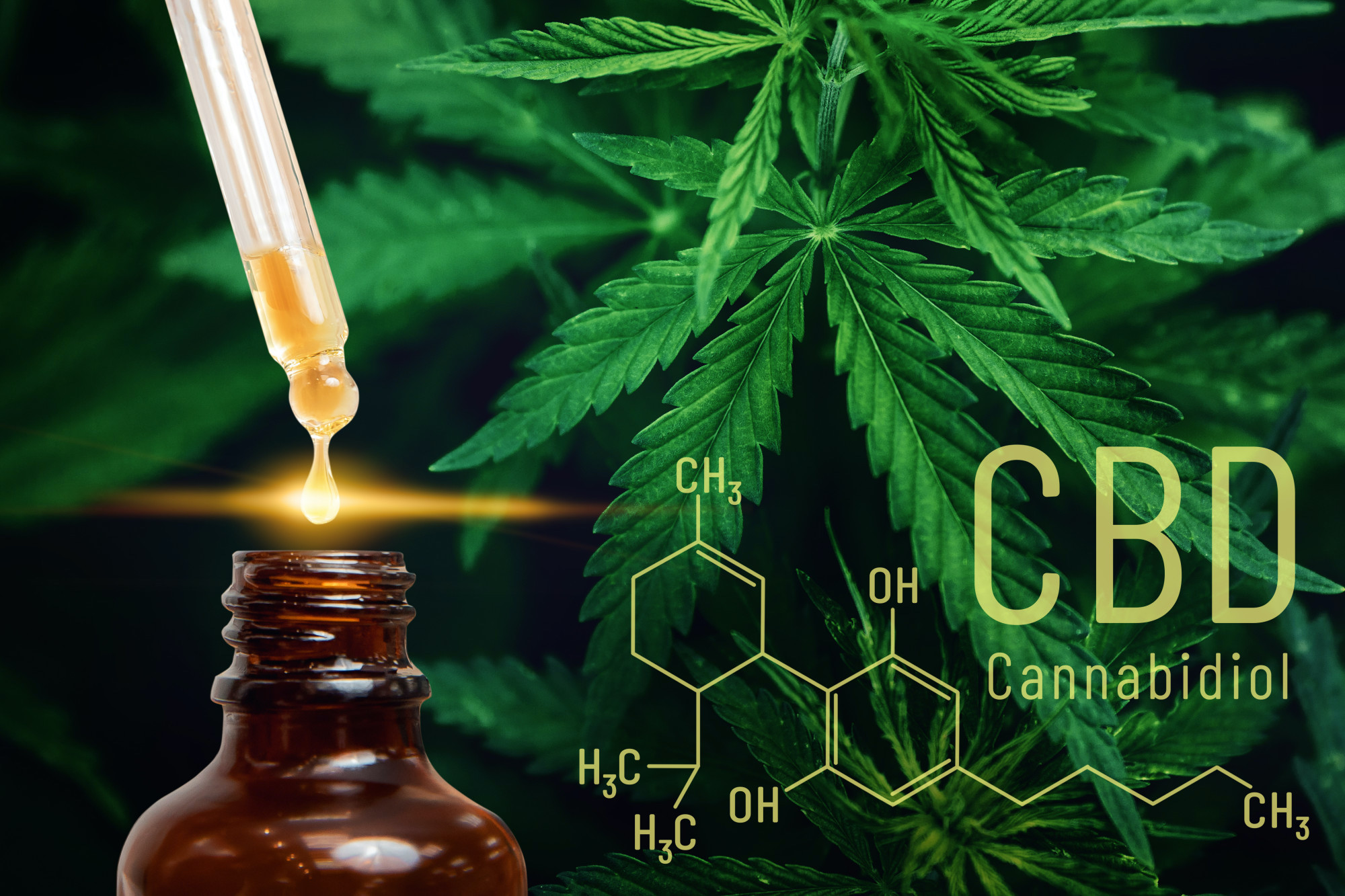 Do you want to purchase CBD oil products that are the best on the market? Here are the different types of CBD products that exist today.